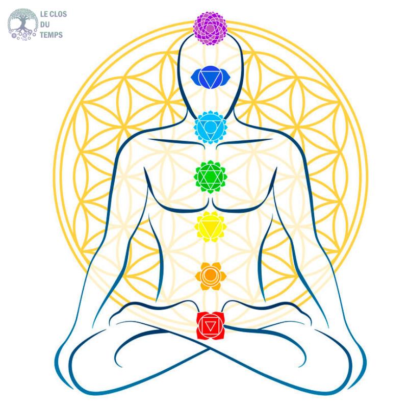 formation méditation et yoga pranayama
